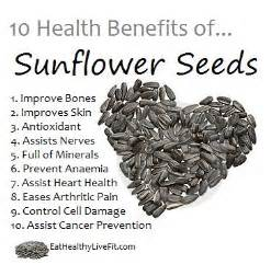 Can eating sunflower seeds raise cholesterol picture 10