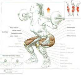 deep muscle to work out focia picture 10