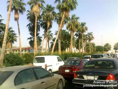 argan life for sale jeddah saudi picture 5