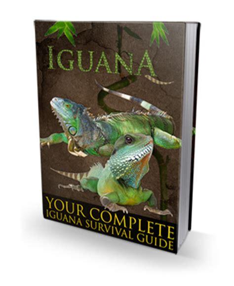 complete iguana diet picture 13