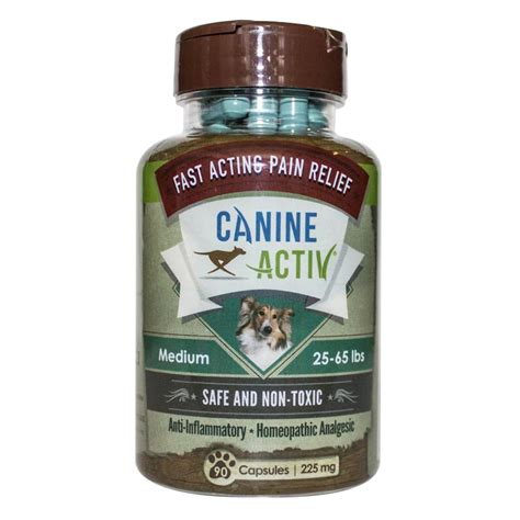 canine pain relief picture 2