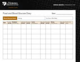 diabetic food diary sample picture 17
