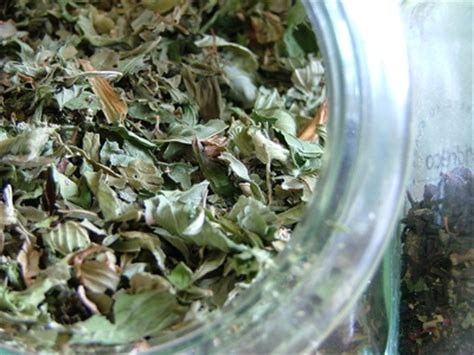 dihydrotestosterone herbs picture 3