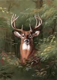 deer antler and big s picture 9