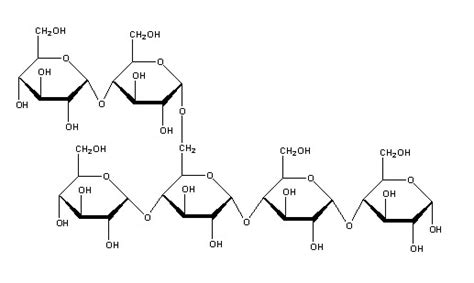 chemical structure of starch picture 6