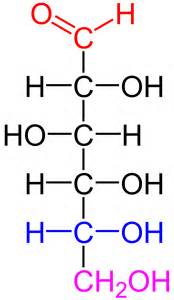 chemical structure of starch picture 10
