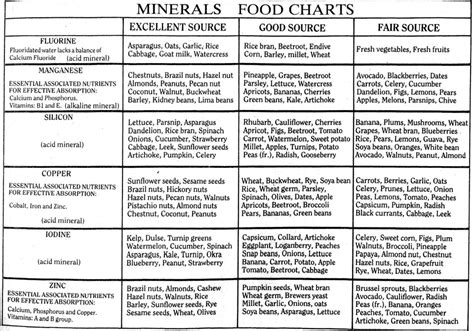 vitamins and minerals that can bring more blood picture 2