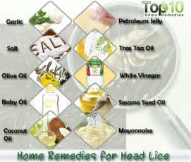 herbal treatments for lice picture 13