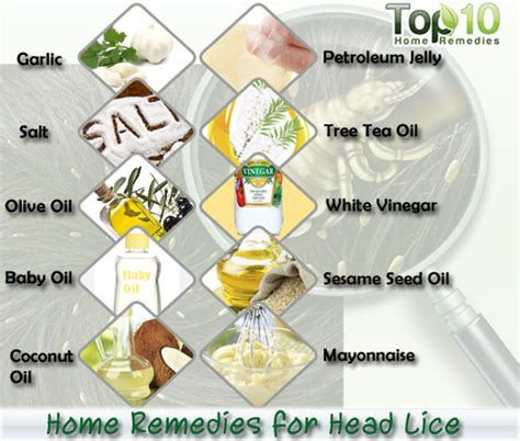 herbal treatments for lice picture 6