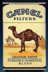 camel smoke login picture 11