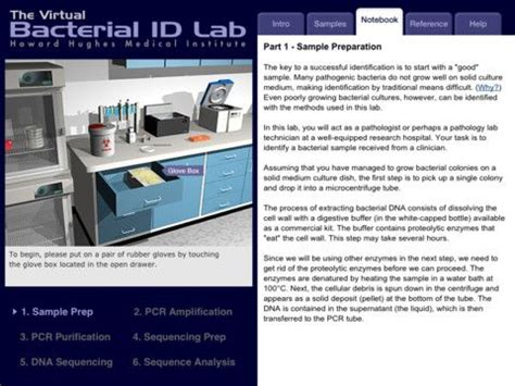 bacterial id kits picture 7