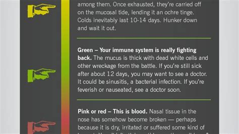 bacterial infection yellow green flem picture 3