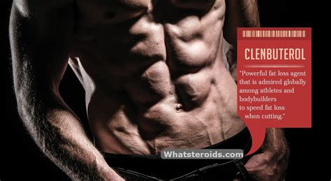 clenbuterol dosage for fat burning picture 6