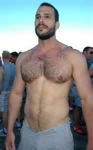 bears men muscle chest hairy picture 5
