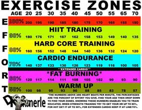 Heart rate fat burning zone picture 2