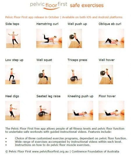 physical therapy exercises diagrams for bladder control picture 2