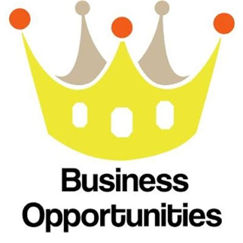 website business opportunity picture 11