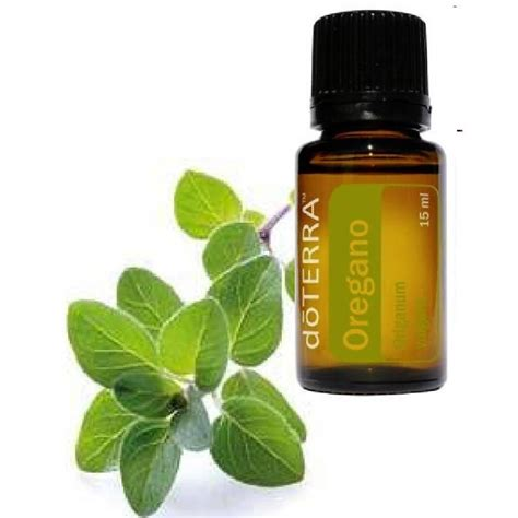 can you use oregano oil as a lip picture 14