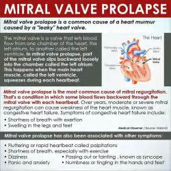 mitral valve herbal picture 15