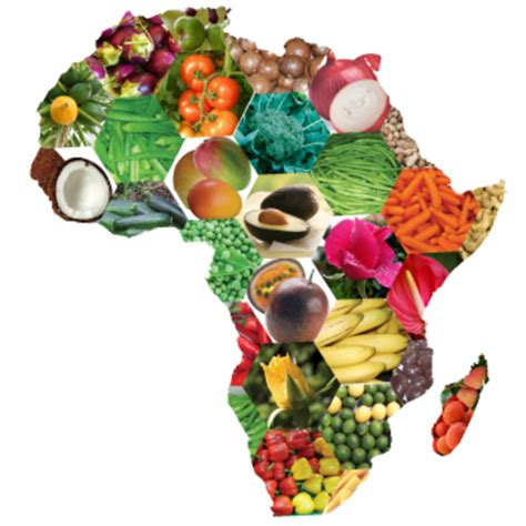african diet picture 13