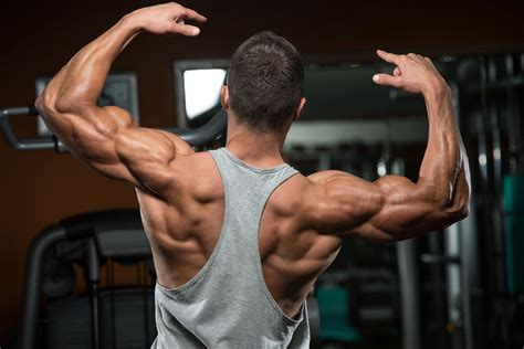 full body muscle building workouts picture 2