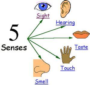 sense sensitive h picture 10
