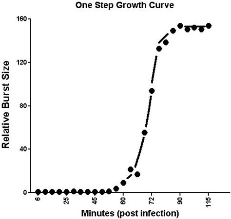 the bacterial growth curve excel picture 2