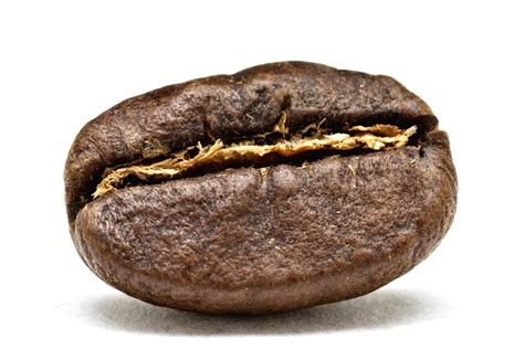 anorexia green coffee picture 14