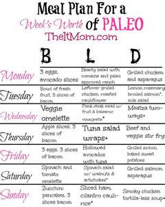 diet plan for beginners picture 7