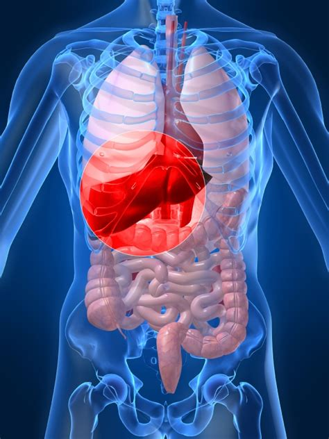 colon liver cleanse for quitting smoking picture 7