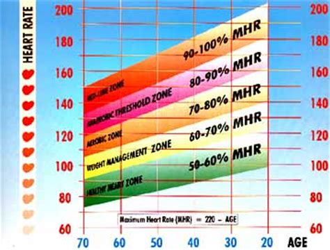 target aerobic heartrate for weight loss picture 5
