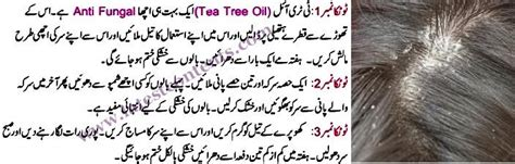 anti lice treatment in urdu picture 11
