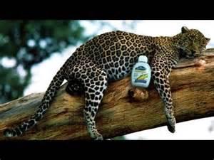 magica argan oil in urdu on dailymotion picture 14