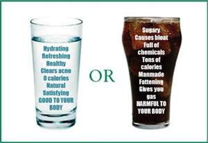 is diet soda better than water when dieting picture 2