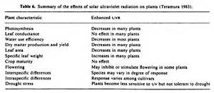 growth after radiation picture 6