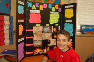 egg ss h science fair picture 17