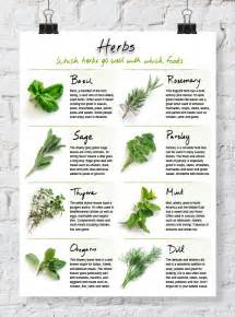 use diet with herbs and smart / fat picture 1