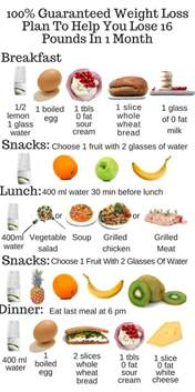 free rapid weight loss diet plan picture 5