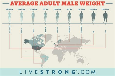 average size for white males picture 10