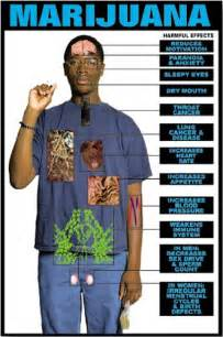 synthetic marijuana side effects and long term damage picture 5