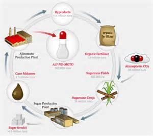 acid production reduces picture 13