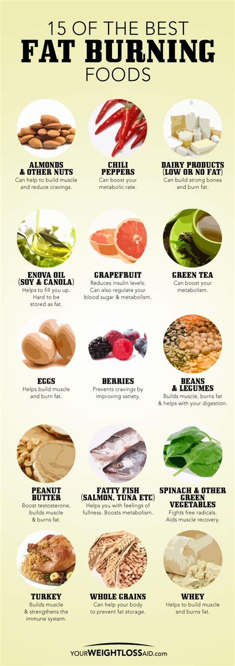 super fast weight loss diets picture 9