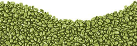 green coffee bean mercury drugstore philippines picture 8