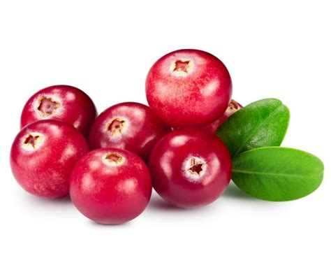cranberries for bladder infection picture 1