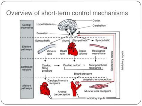 Blood pressure control picture 3