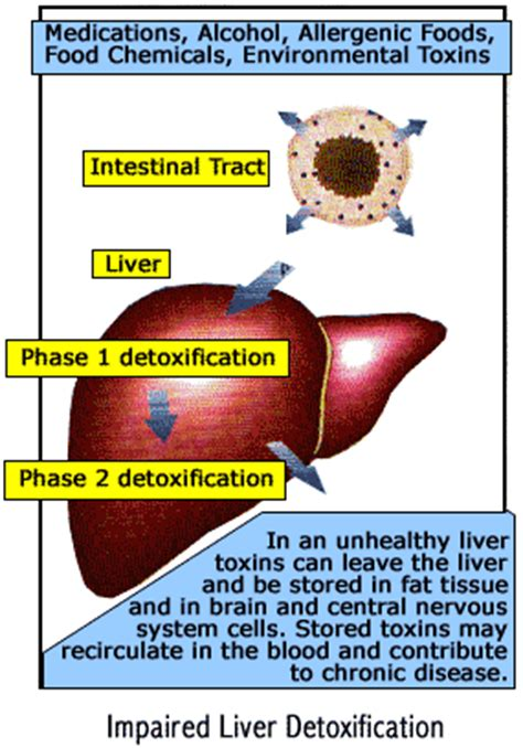 will paxil raise liver enzymes picture 15