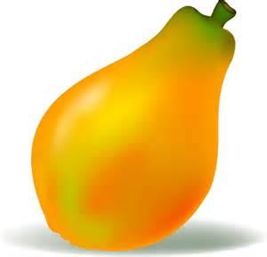 organic papaya picture 2