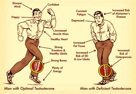 side effects too much testosterone injections picture 8
