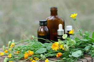 natural herbal medicines picture 11