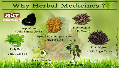 which of this herbal is effective medicine for picture 3